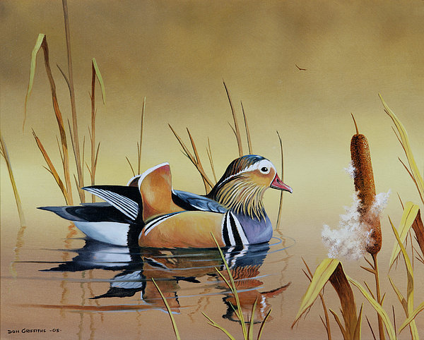 Duck Painting - Mandarin Duck by Don Griffiths