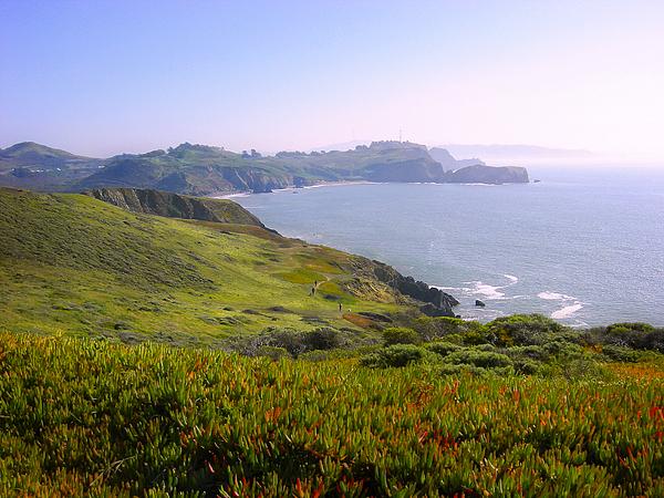 Landscape Photograph - Marin Headlands 2 by Karen  W Meyer