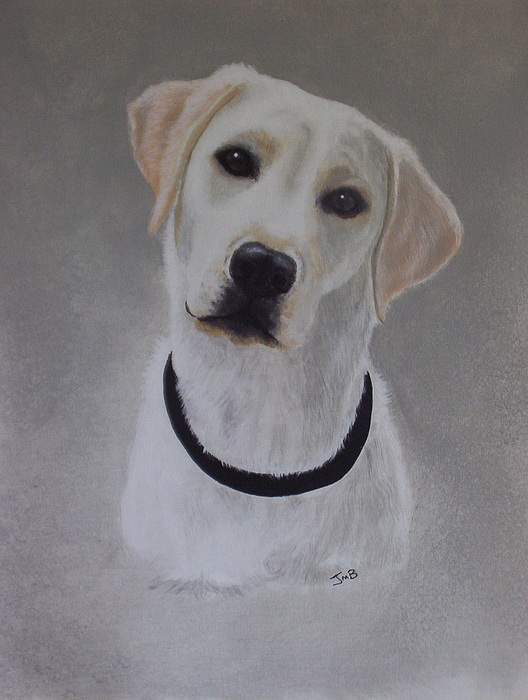 Pet Portrait Painting - Maxie by Janice M Booth