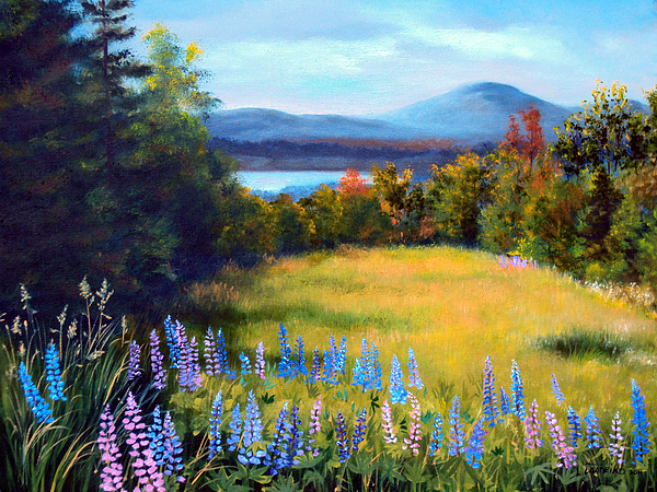 Spring Lupine Adorn The Edge Of This Hilltop Meadow Overlooking Mountains And Lakes Of Northern Maine. Painting - Meadow Lupine II by Laura Tasheiko