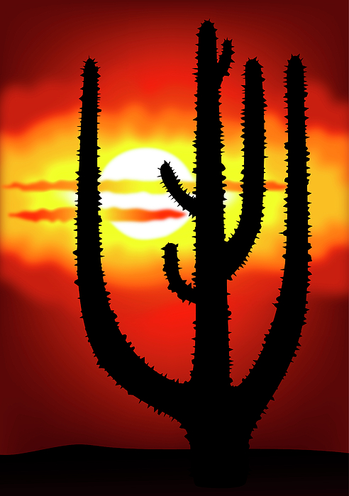 Symbol Digital Art - Mexico Sunset by Michal Boubin