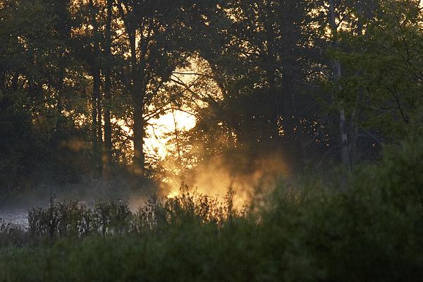 Sunrise Photograph - Mid October Lake Evergreen Sunrise by Thomas Dittmer