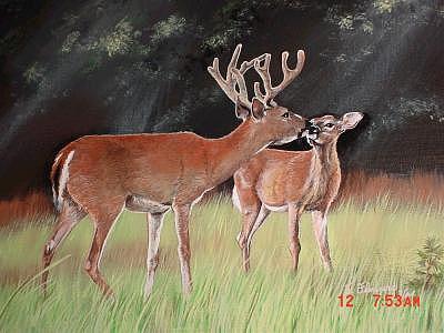 Deer Painting - Mikeys Deer by Terri Kilpatrick