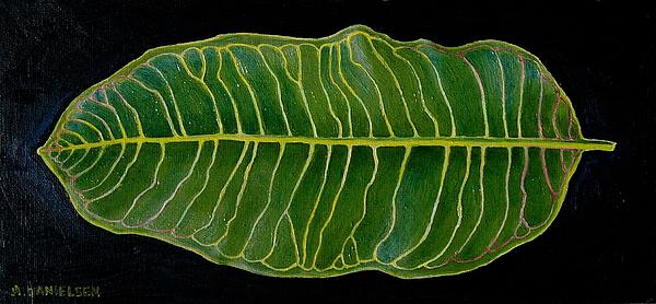 Leaf Painting - Milk Weed by Andrew Danielsen