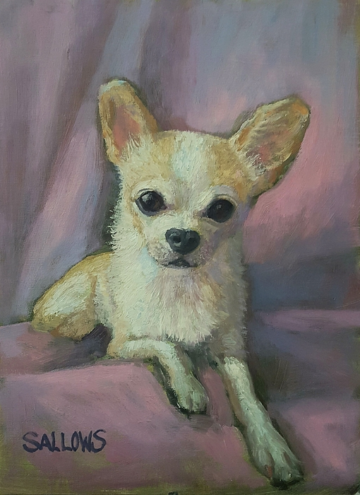 Millie, Chihuahua Painting by Nora Sallows