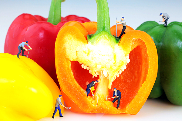 Pop Photograph - Mining In Colorful Peppers by Paul Ge