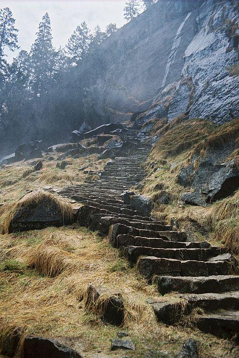 Landscape Photograph - Mist Trail by Richard Verkuyl