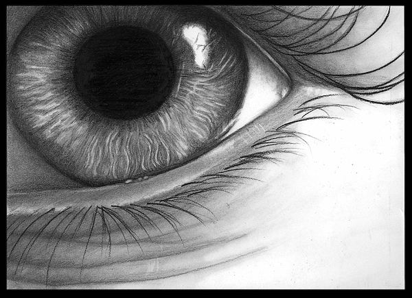 Eye Drawing - Mistif-eye by Alycia Ryan