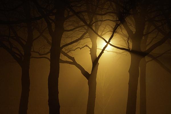 Mist Photograph - Misty Cross by Erik Tanghe
