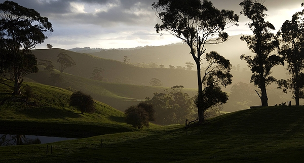 Landscapes Photograph - Misty by Lee Stickels