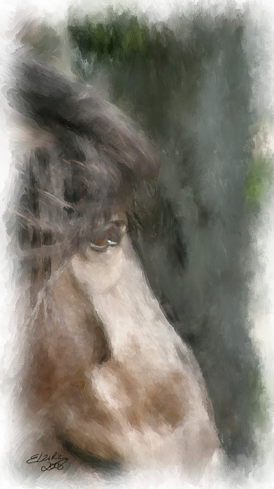 Horse Painting - Misty Morn by Elzire S