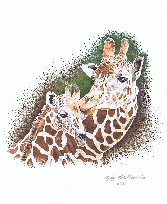 Mom And Baby Giraffe Drawing By Judy Skaltsounis