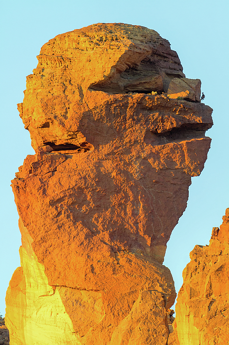 Monkey Face Photograph - Monkey Face Pillar At Smith Rock Closeup by David Gn