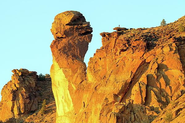 Monkey Face Photograph - Monkey Face Pillar At Smith Rock by David Gn