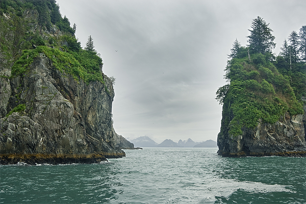 Color Image Photograph - Monoliths In Aialik Cape On A Foggy by James Forte