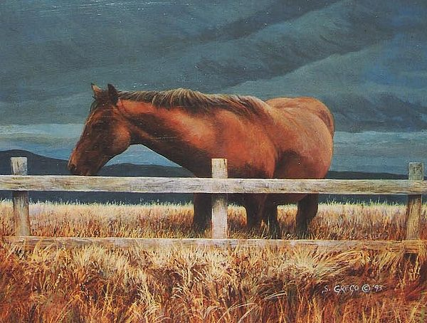 Hores Painting - Montana Mare Study by Steve Greco