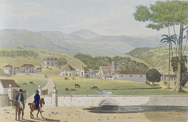 Montpelier Painting - Montpelier Estates - St James by James Hakewill