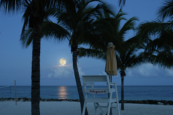 Beach Photograph - Moonlight Serenade by Angie Bechanan