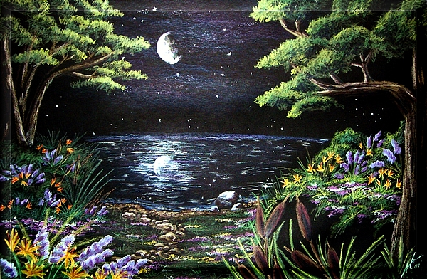Drawing Drawing   Moonlit Garden By Amanda Martin