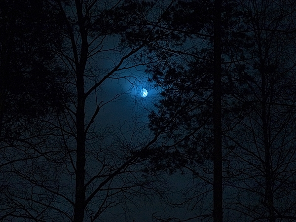 Nokia Photograph - Moonshine 08 by Jouko Lehto