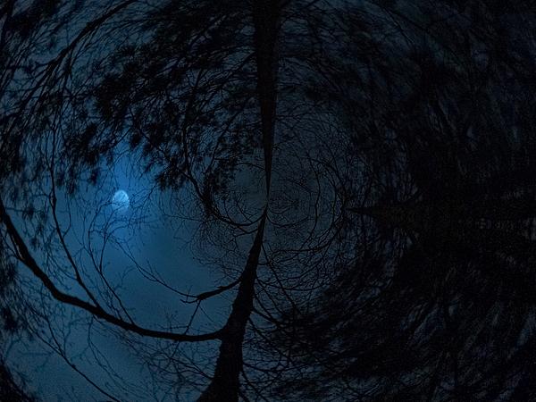 Nokia Photograph - Moonshine 15 Fishy by Jouko Lehto