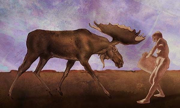 Drawing Digital Art - Moose No Squirrel by Tom Durham