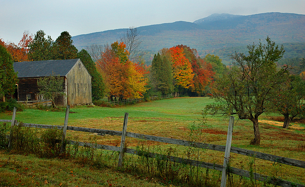 New England Fall Photograph - Morning Grove - New England Fall Monadnock Farm by Jon Holiday
