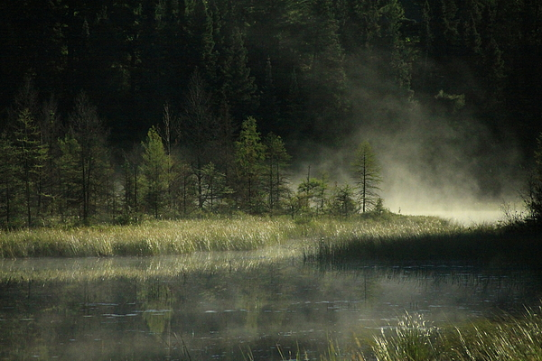 Landscape Photograph - Morning Mist On The Gunflint Trail by Joi Electa