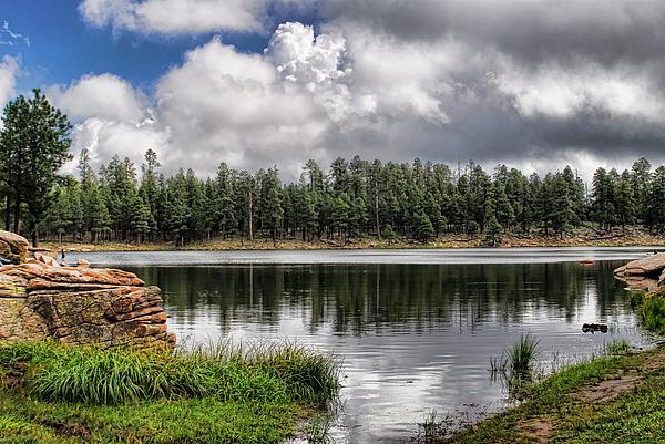 Arizona Photograph - Morning Serenity  by Saija  Lehtonen