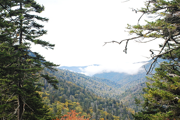Mountain Photograph - Morton Overlook Smoky Mountains by Classic Color Creations