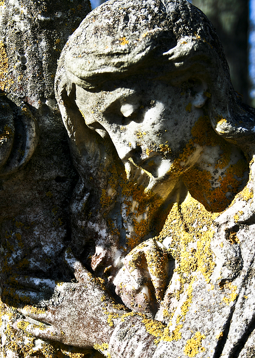 Statue Photograph - Mother Mary by Nora Blansett
