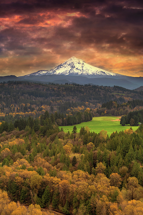 Mount Hood Photograph - Mount Hood At Sandy River Valley In Fall by David Gn
