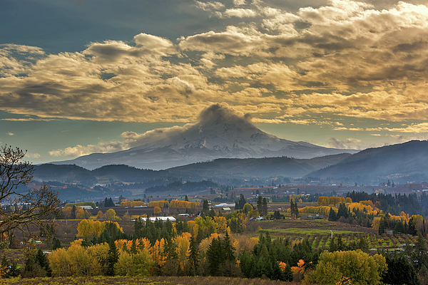 Hood River Photograph - Mount Hood Over Farmland In Hood River In Fall by David Gn