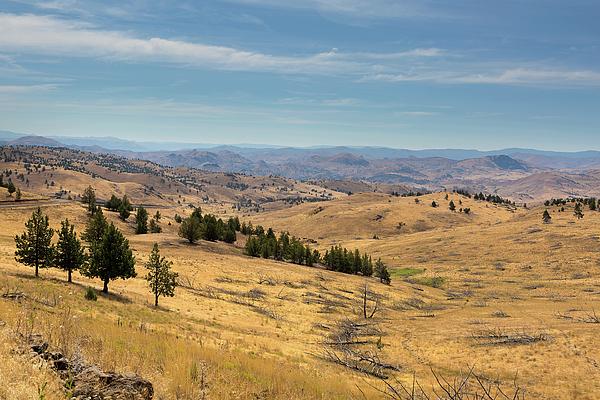 Central Oregon Photograph - Mountainous Terrain In Central Oregon by David Gn