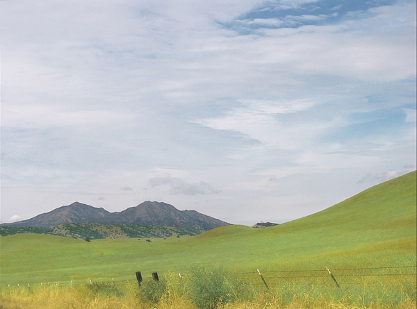Landscape Photograph - Mt. Diablo Mcr 1 by Karen  W Meyer