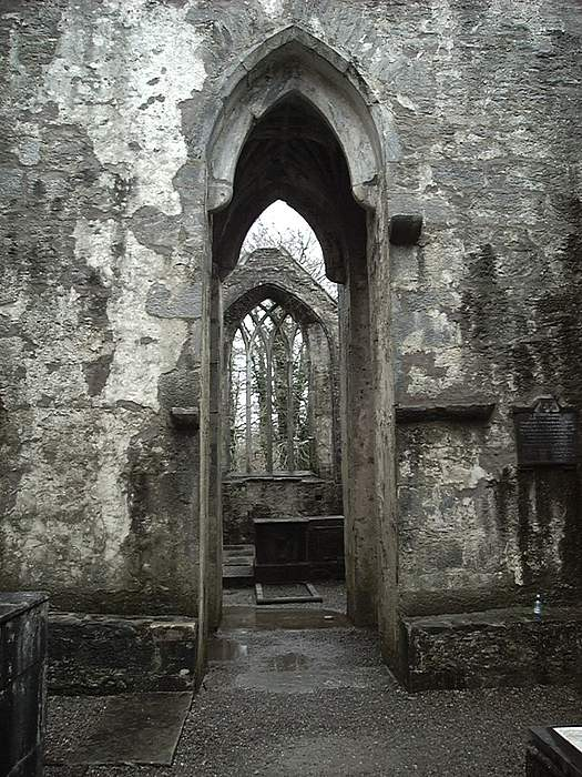 Travel Photograph - Muckross Abbey by William Thomas