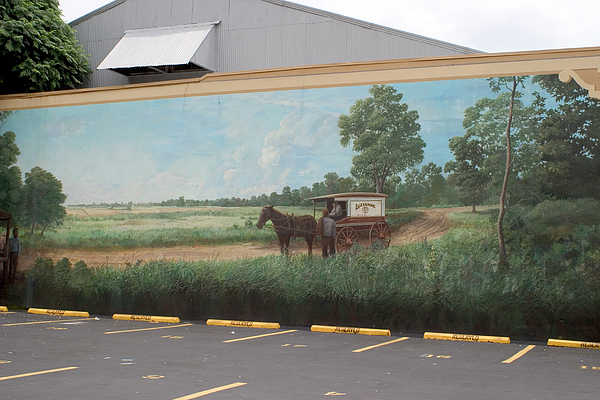 Country Road Painting - Mural Of Horse And Buggy In Arkansas by Carl Purcell