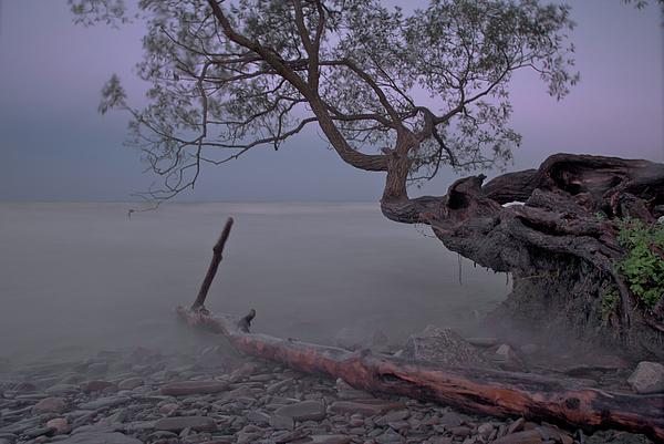Mystic Lake Photograph - Mystic Lake by Andre Distel