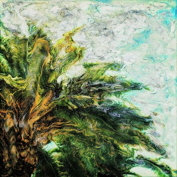 Tokarski Photograph - Mystical Palm by Paul Tokarski