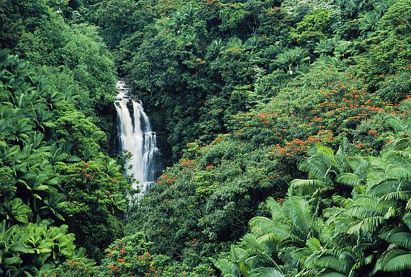 Waterfalls Photograph - Nanue Falls Hawaii by Greg Vaughn