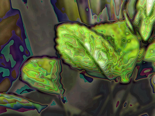 Abstract Photograph - Natural Process by William Seguin