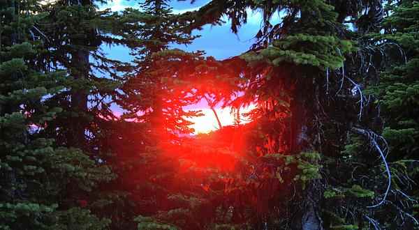 Montana Photograph - Natures Portal by Dave Hampton Photography