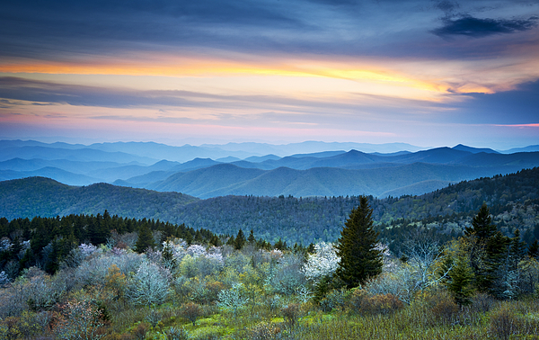 Blue Ridge Mountains Photograph - Nc Blue Ridge Parkway Landscape In Spring - Blue Hour Blossoms by Dave Allen