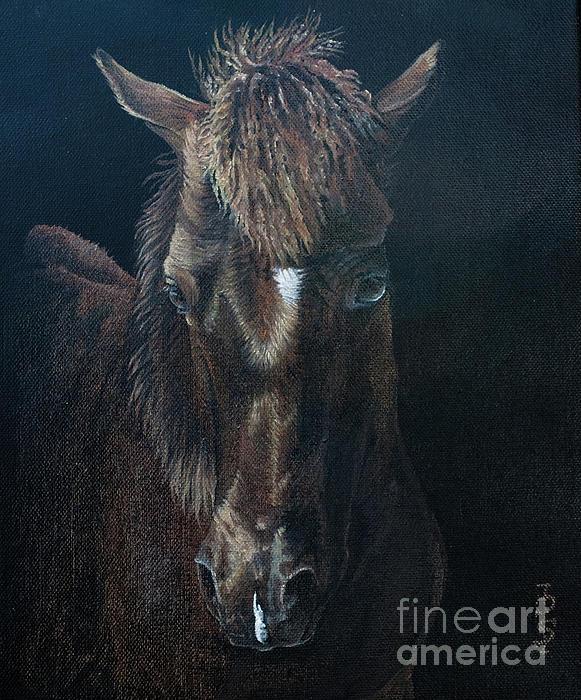 Portrait Painting - Nervous Colt  Milltown Fair by Pauline Sharp