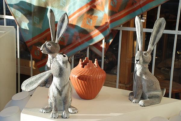 Rabbits Photograph - New Mexico Rabbits by Rob Hans