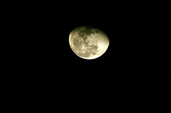 Moon Photograph - Night Reflection by Don Prioleau