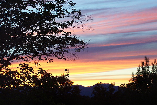 Oak Tree Photograph - Northern Ca June Sunset  by Angie Anliker