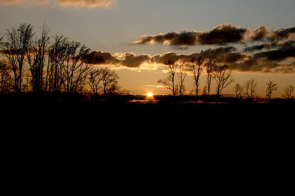 Sunset Photograph - November Sky by Alexandra Harrell