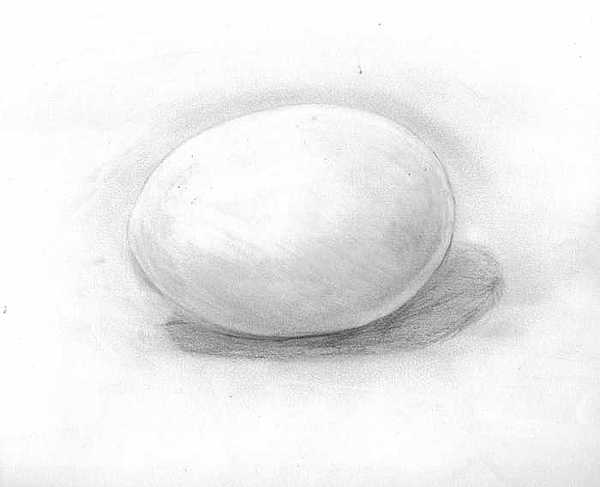 Egg Drawing - observation EGG ON WHITE by Katie Alfonsi