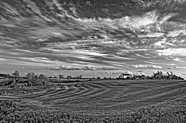 Landscape Photograph - October Patterns Bw by Steve Harrington